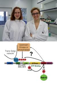 Francesca Tonelli and Elena Purlyte and model of how Rab29 controls LRRK2 based on our research.